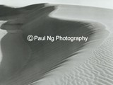 BWW-004 - Soft Afternoon Light, Killpecker Sand Dunes