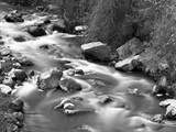 BWW-009 - Sheep Creek, UT