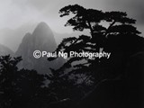 BW-008 - Sunrise, Huangshan, China